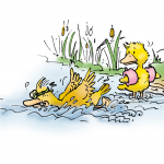 Ente liegt entkräftet am Ufer