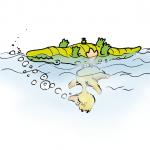 Badeente mit Aufblas-Krokodil