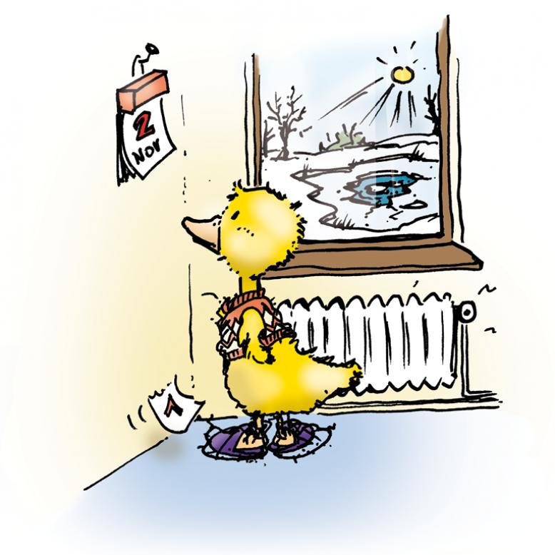 Ente schaut am 2. November auf den Kalender