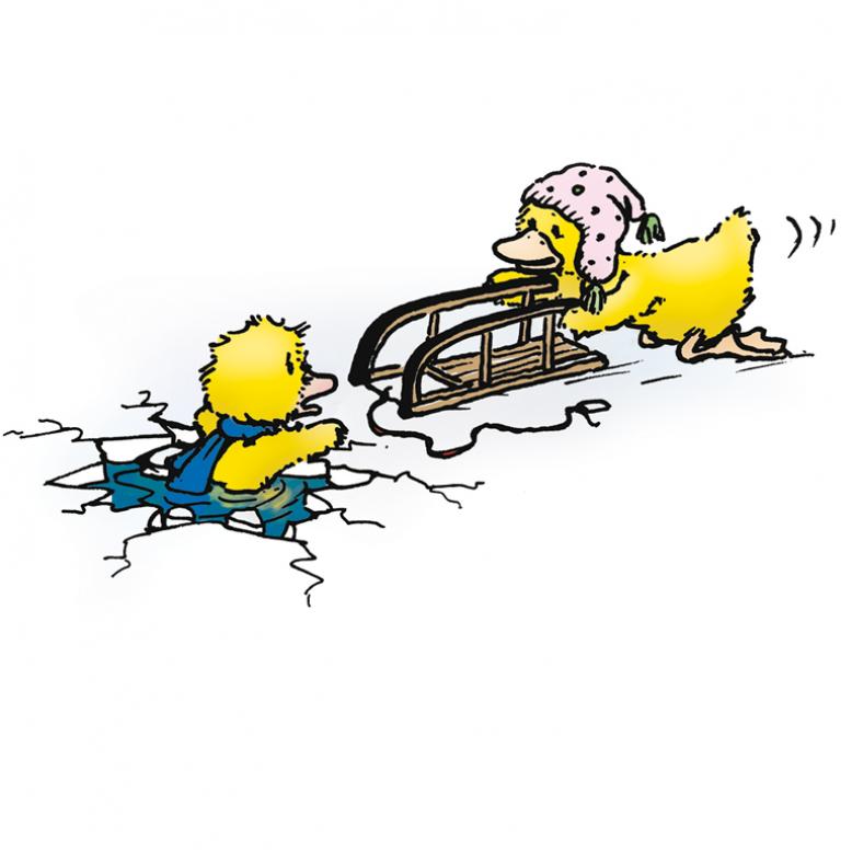Ente reicht eingebrochener Ente einen Schlitten an