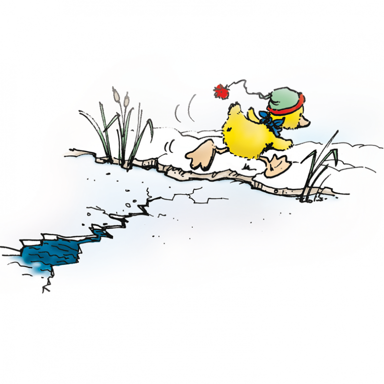 Ente flüchtet von brechendem Eis