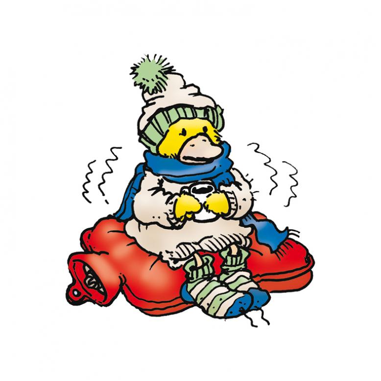 Ente sitzt auf einer Wärmflasche